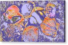 Sea Journey Acrylic Print by Rachel Hannah