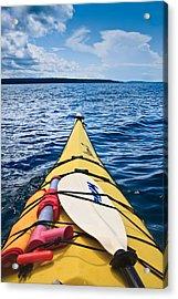 Sea Kayaking Acrylic Print by Steve Gadomski