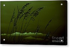 Sea Oat And Clouds Acrylic Print by Janice Spivey