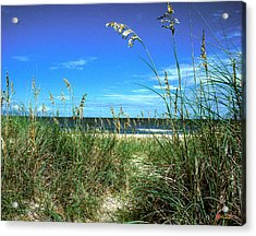 Acrylic Print featuring the photograph Sea Oat Dunes 11d by Gerry Gantt