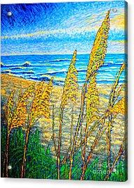 Sea Oat,dual #1 Acrylic Print