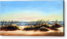 Sea Oats Acrylic Print by Michele Snell