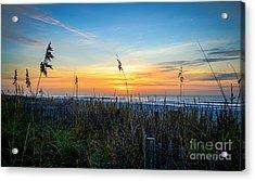 Sea Oats Sunrise Acrylic Print
