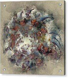 Sea Shell 6 - By Diana Van Acrylic Print