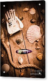 Sea Shell Decking Acrylic Print by Jorgo Photography - Wall Art Gallery