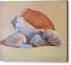 Sea Shells Acrylic Print by Betty Henderson