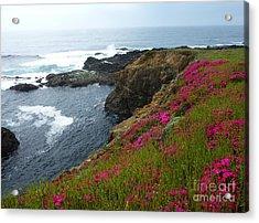 Sea Shoulder Shimmer Acrylic Print