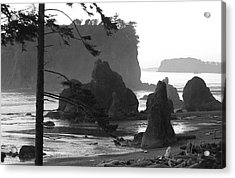 Sea Stacks Acrylic Print by Sonja Anderson