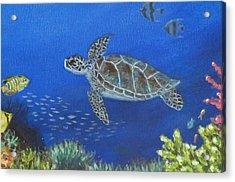 Sea Turtle 2 Acrylic Print