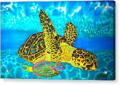 Sea Turtle And Parrotfish Acrylic Print