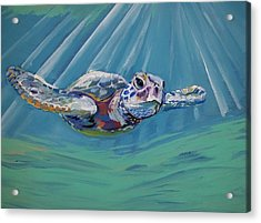 Sea Turtle  Acrylic Print by Anne Seay