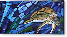 Sea Turtle I Acrylic Print by David McGhee