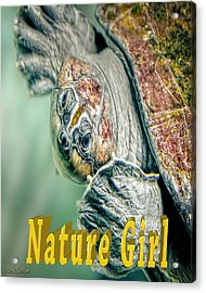 Sea Turtle Nature Girl Acrylic Print by LeeAnn McLaneGoetz McLaneGoetzStudioLLCcom