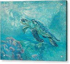 Sea Turtle Acrylic Print by Vicky Russell