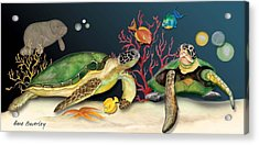 Sea Turtles Acrylic Print by Anne Beverley-Stamps