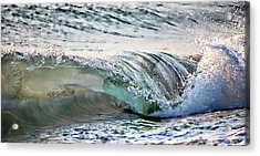 Sea Turtles In The Waves Acrylic Print by Barbara Chichester