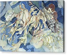 Seadragon Fantasy Acrylic Print by Liduine Bekman
