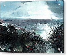 Seaface Acrylic Print by Anil Nene