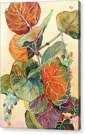 Seagrape Season Acrylic Print by Judy Mercer