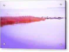 Seagrass Sandbar Acrylic Print by Glenn Gemmell