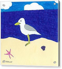 Seagull Acrylic Print by Jayson Halberstadt