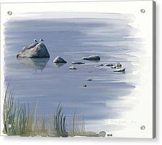 Gull Siesta Acrylic Print