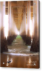 Acrylic Print featuring the photograph Seagull Under The Pier by Jerry Cowart