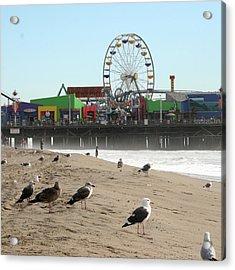 Seagulls And Ferris Wheel Acrylic Print