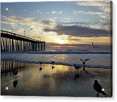 Seagulls And Salty Air Acrylic Print