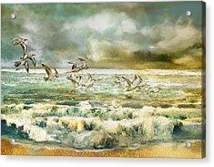 Seagulls At Sea Acrylic Print by Anne Weirich