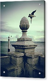 Acrylic Print featuring the photograph Seagulls In Columns Dock by Carlos Caetano