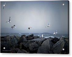 Acrylic Print featuring the photograph Seagulls In Flight by Larry Keahey