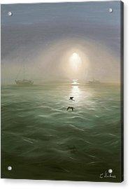 Seagulls In The Mist Acrylic Print