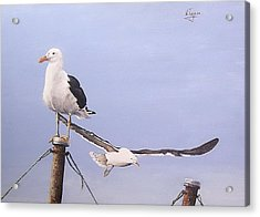 Acrylic Print featuring the painting Seagulls by Natalia Tejera