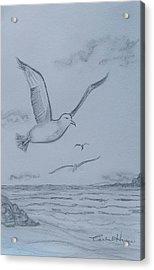 Seagulls Over The Ocean Acrylic Print