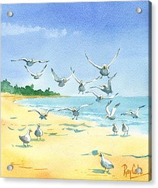 Seagulls Acrylic Print by Ray Cole
