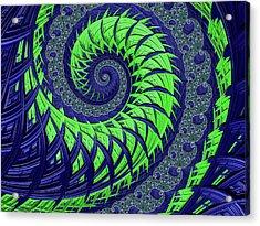 Seahawks Spiral Acrylic Print