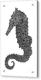 Seahorse Acrylic Print by Carol Lynne
