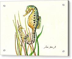 Seahorse Mom And Baby Acrylic Print by Juan Bosco