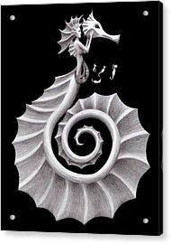 Seahorse Siren Acrylic Print by Sarah Krafft