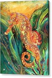 Seahorse - Spirit Of Contentment Acrylic Print