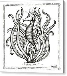 Seahorse Acrylic Print
