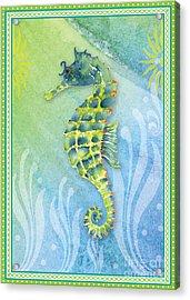 Seahorse Blue Green Acrylic Print by Amy Kirkpatrick