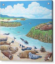 Seal Sanctuary  Acrylic Print