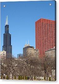 Sears Tower Acrylic Print by Wayne Whitney