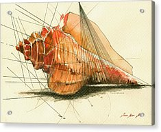 Seashell Art Painting Acrylic Print by Juan  Bosco