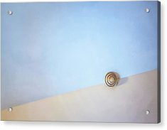 Seashell By The Seashore Acrylic Print