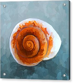 Seashell II Acrylic Print by Jai Johnson