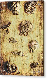 Seashell Shaped Pendants On Wooden Background Acrylic Print