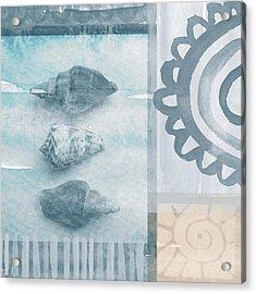 Seashells 2 Acrylic Print by Linda Woods
